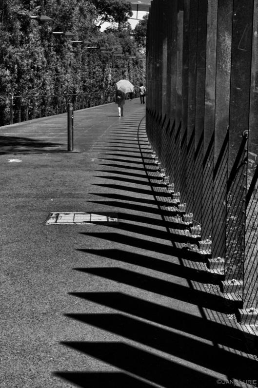 Shadows and Umbrella, Sydney